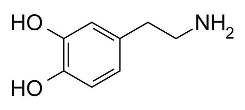wat is chemie in de liefde